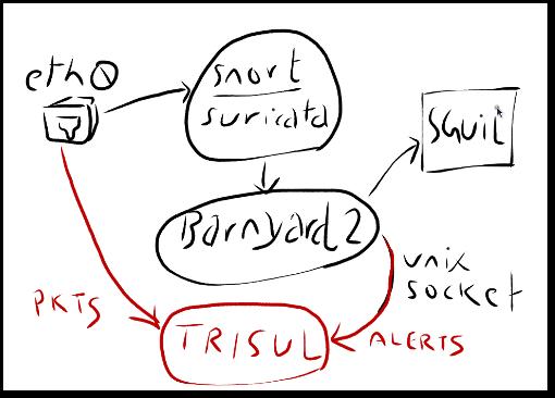 Trisul plugs into NSM components